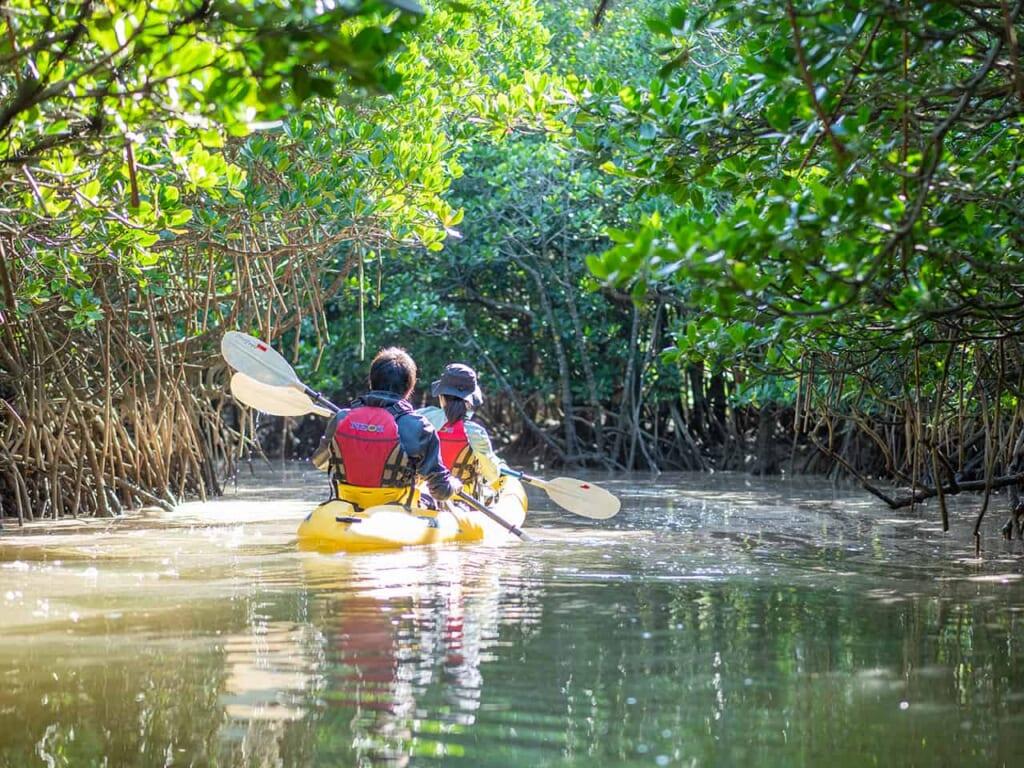 excursion en canoë à okinawa