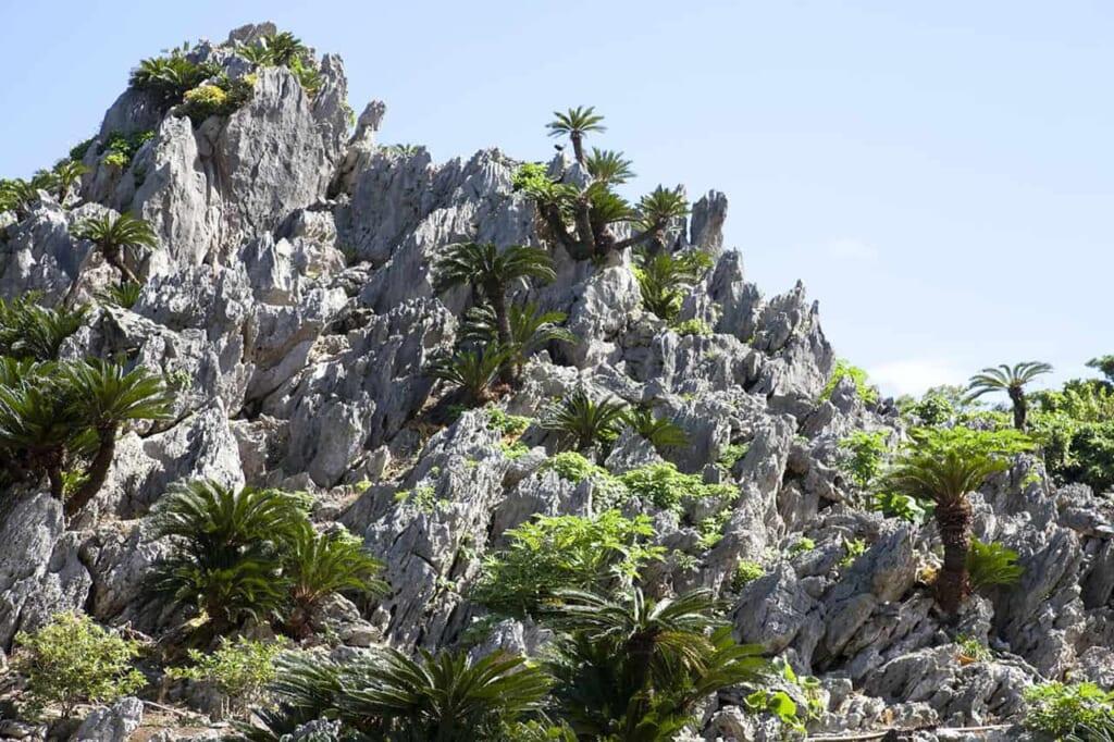 falaises du mont yanbaru au Japon