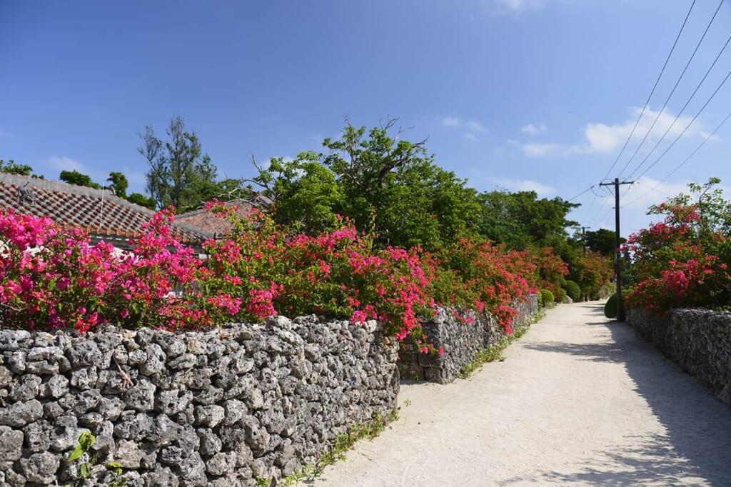 rue de sable blanc à Okinawa