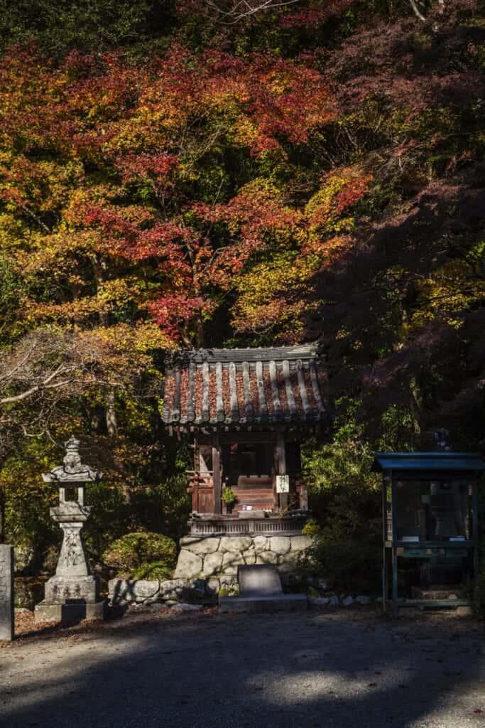 Feuillages d'automne autour d'un temple bouddhiste du Japon