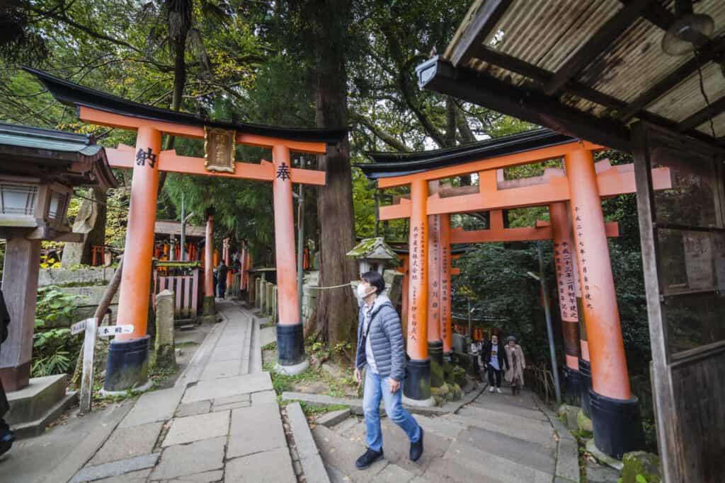 deux sentiers dans le sanctuaire de fushimi inari