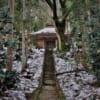 Escapade dans la forêt avant de rejoindre le Chûson-ji
