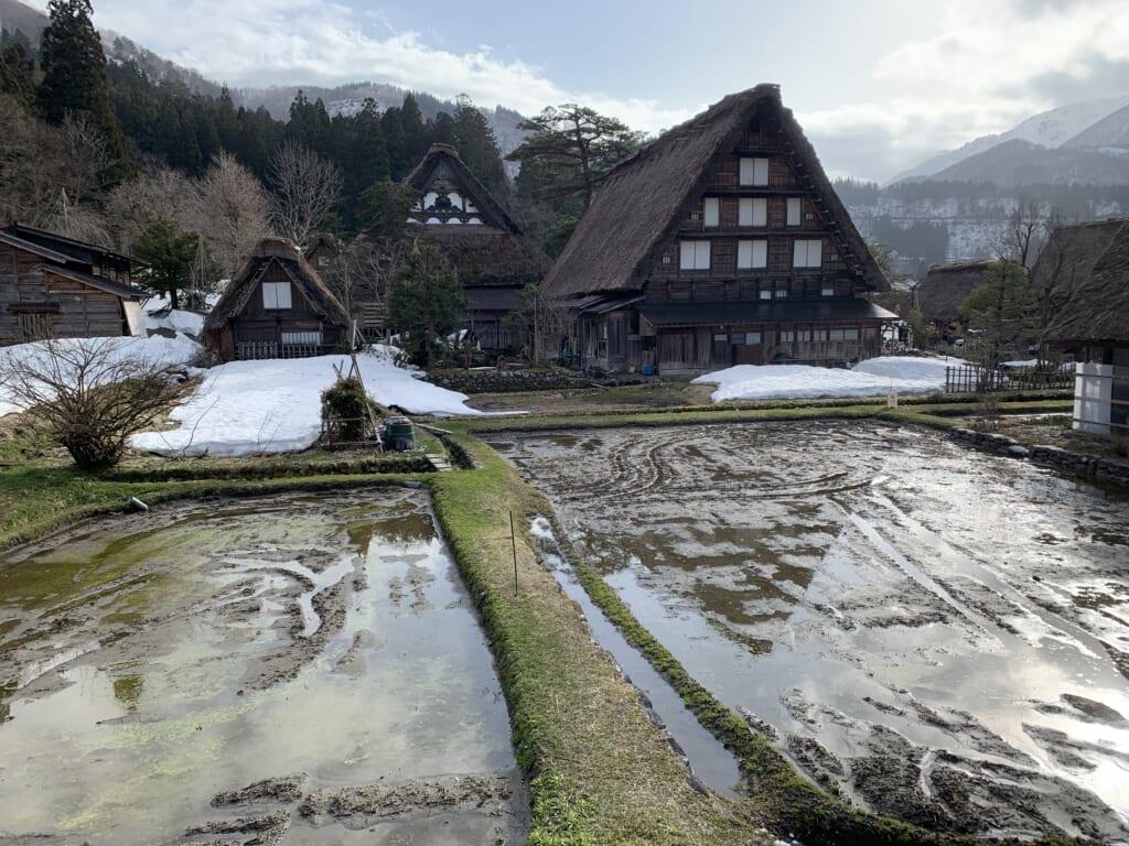 hiver à shirakawa-go