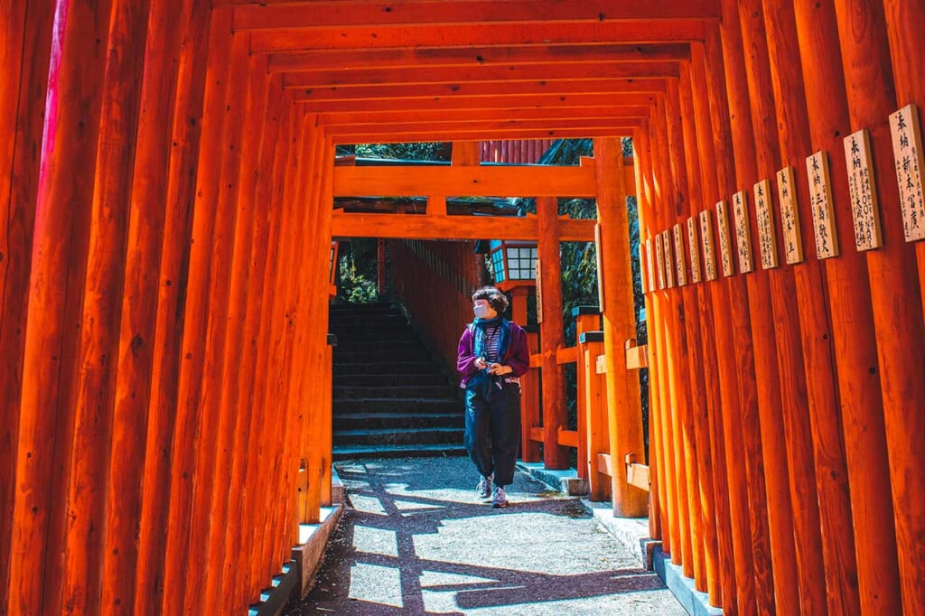 Allée de torii vermillon dans un sanctuaire inari au Japon