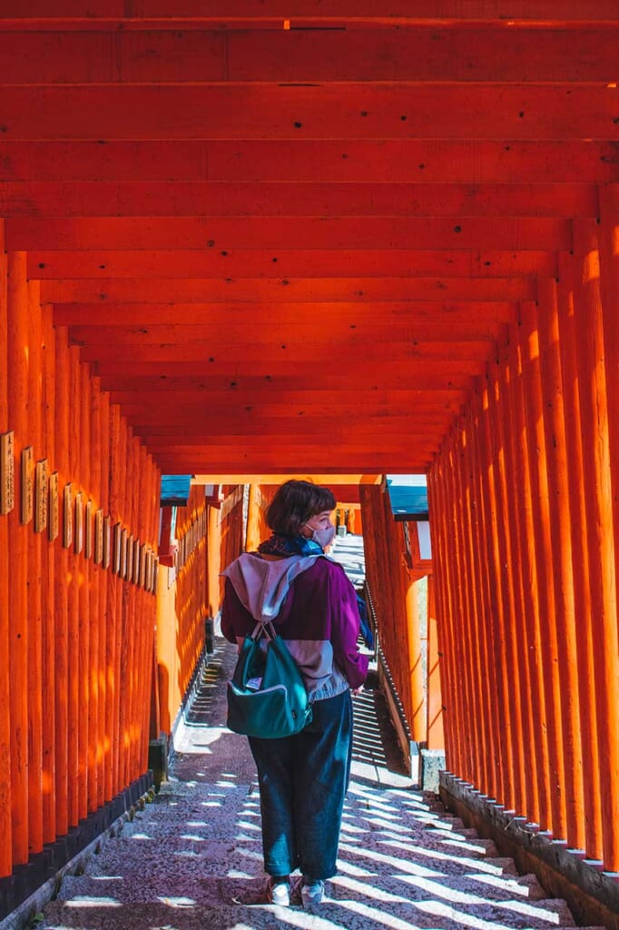 Portes torii vermillon dans un sanctuaire shinto inari