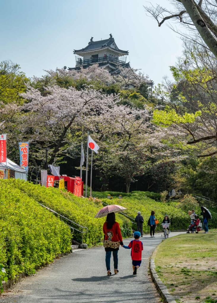 Ballade sous les cerisiers en fleurs au château de Hamamatsu