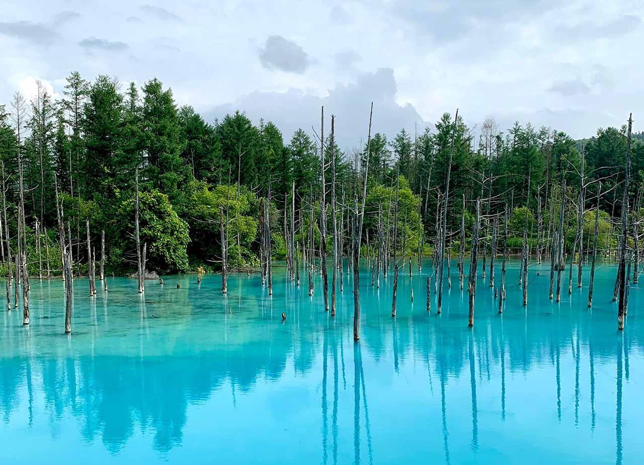 Les plus beaux parcs nationaux à visiter dans l'Est d'Hokkaido