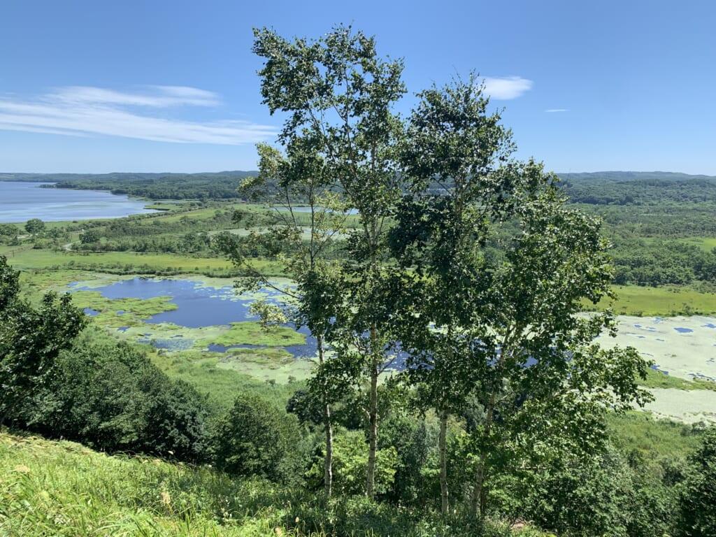 Parc national Kushiro, marais