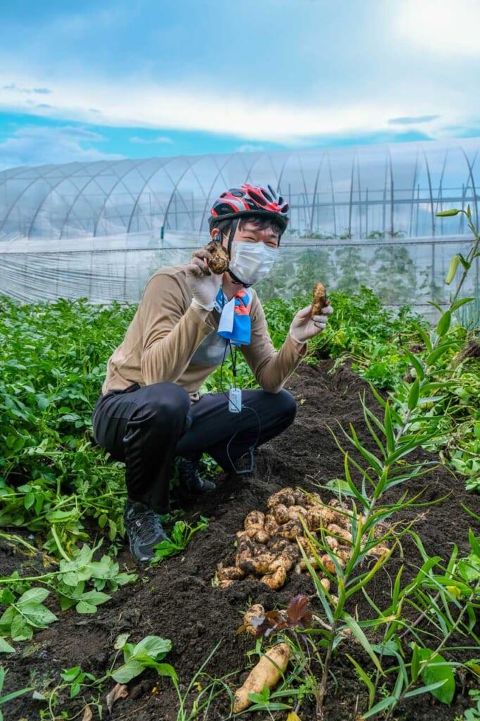 Japonais portant un casque de vélo et montrant des pommes de terres tout juste déterrées