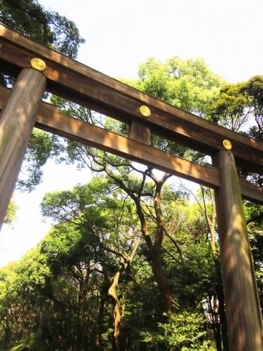 torii parque tokio