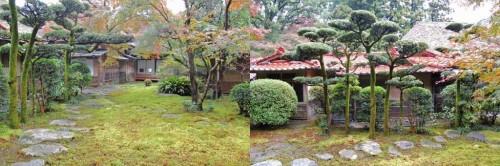 Suelo de musgo en el jardín Kunenan Kanzaki (Japón)