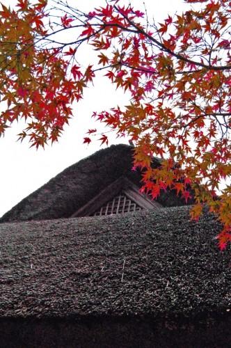 Techo de una casa tradicional y hojas otoñales en el jardín Kunenan Kanzaki (Japón)