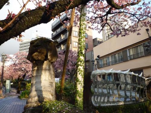 Ciruelos en flor en Atami, Shizuoka.