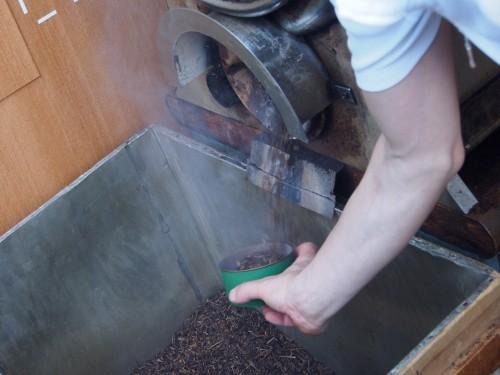 Preparando té hojicha en Uji, Kioto.