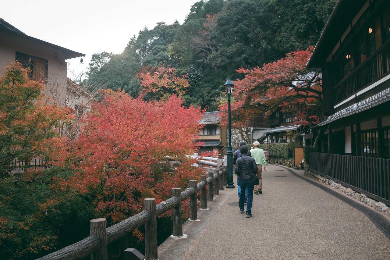 Andando por las montañas cerca de Osaka rodeados de arces