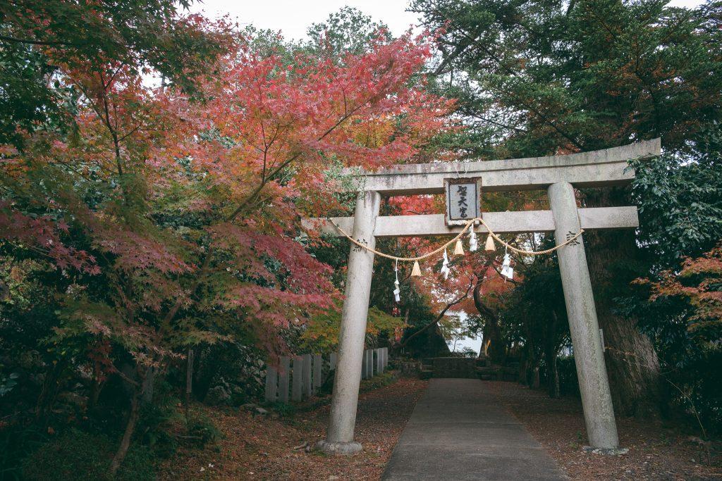 Un torii durante la ruta en las montañas Mino