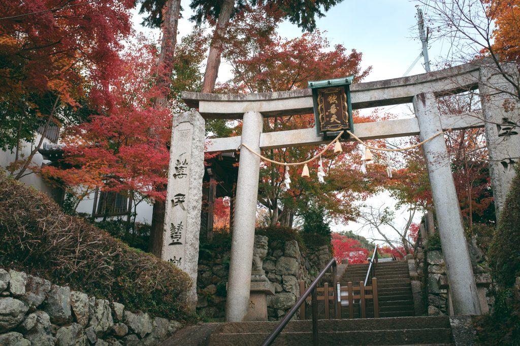 Santuario alrededor de la zona de Mino