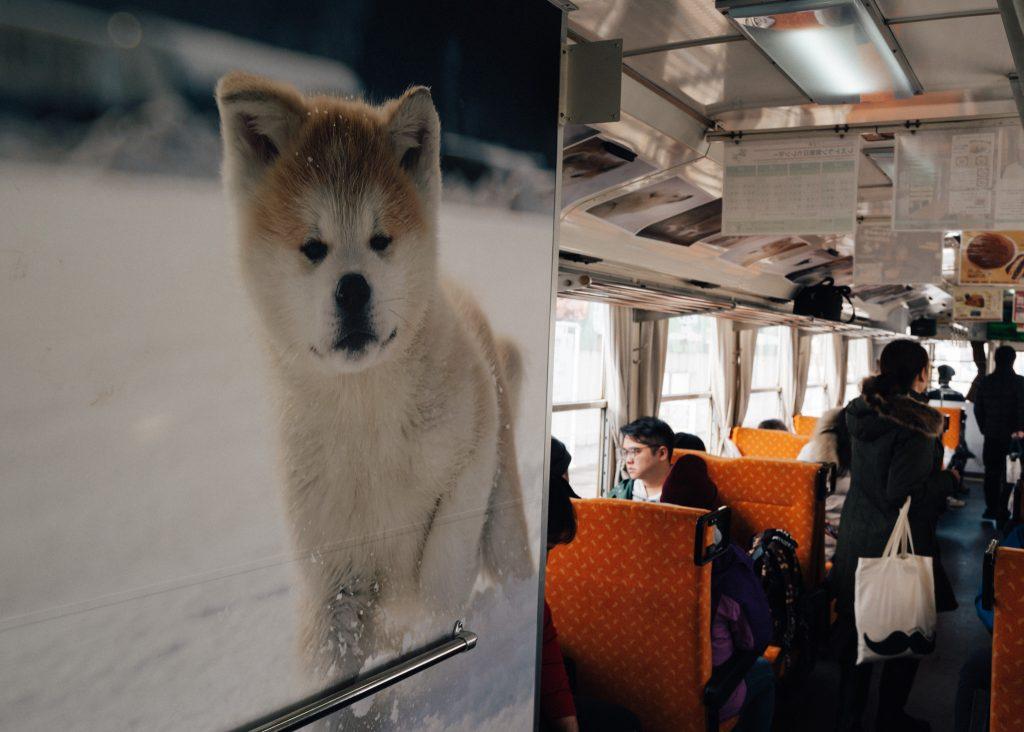 Uno de los trenes japoneses más caninos: el tren del perro