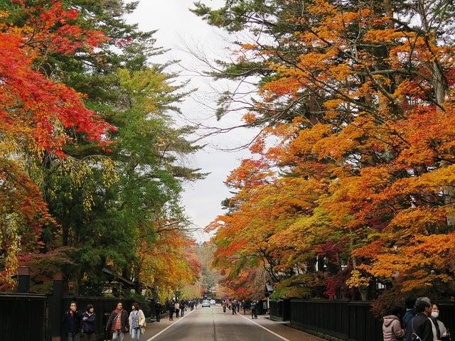 Kakunodate en otoño