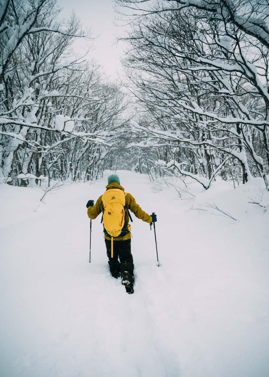 Esquí con raquetas es una de las actividades que puedes hacer en Tazawako