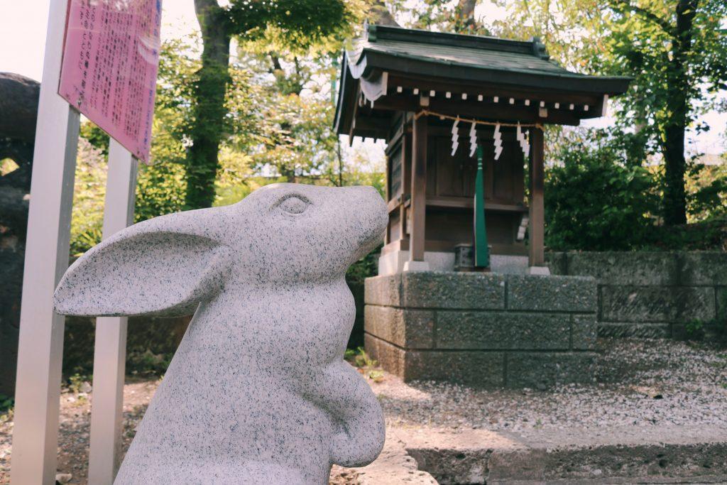 Conejo en el Hachiman jinja