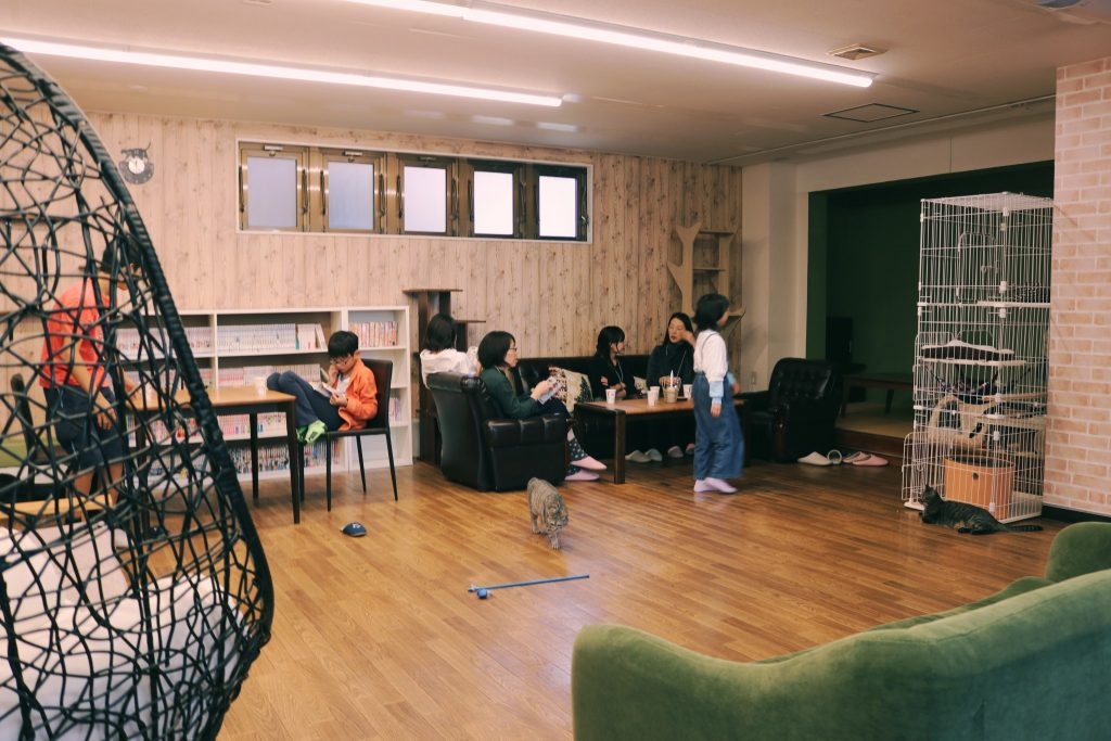 Vista general del Café Café Goma