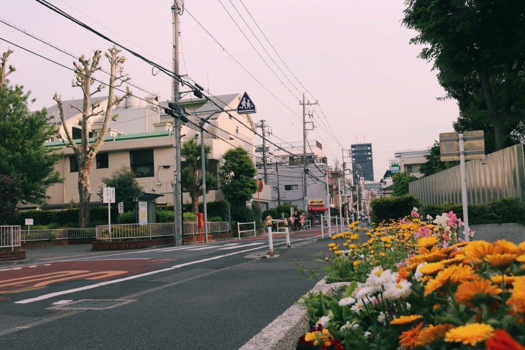 Flores en el barrio de Nakano