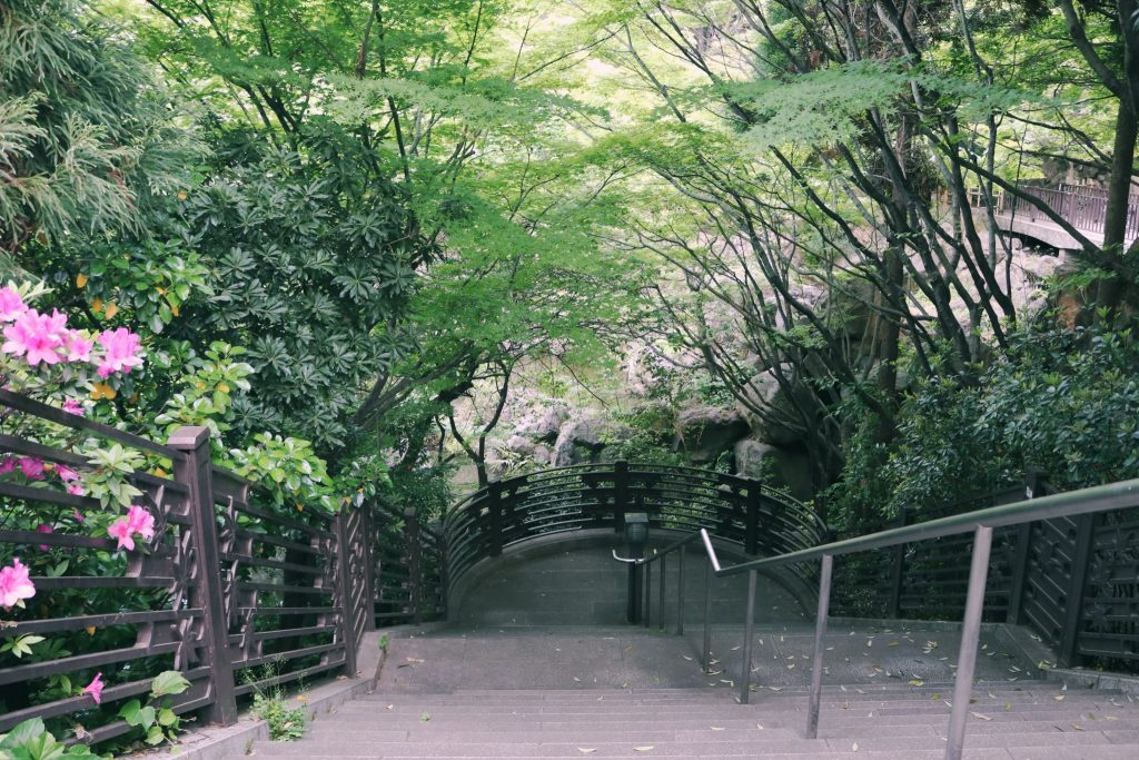 El parque Momijiyama en Nakano