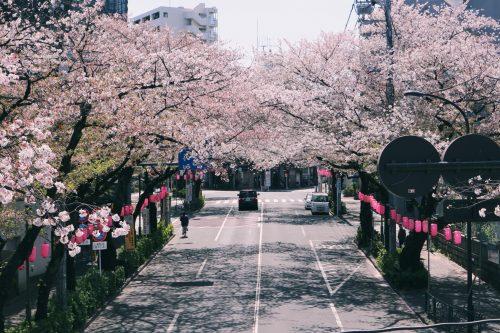 Nakano Dori, Nakano, Tokio, Japón