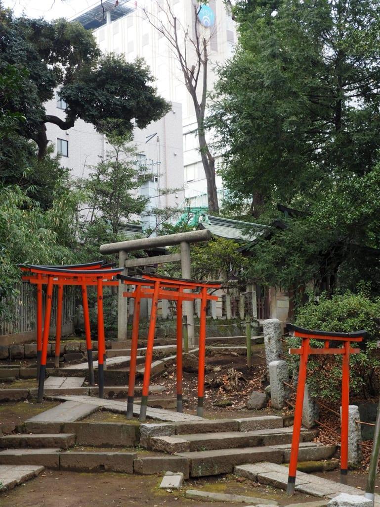 Los torii en el santuario de Nezu en Yanesen