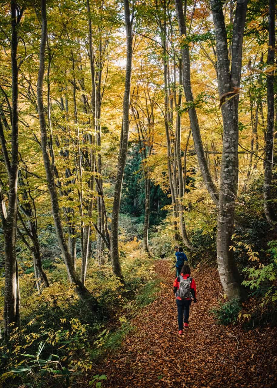 Andar por el Sendero de Shin-etsu es una experiencia única, en Iiyama, Nagano