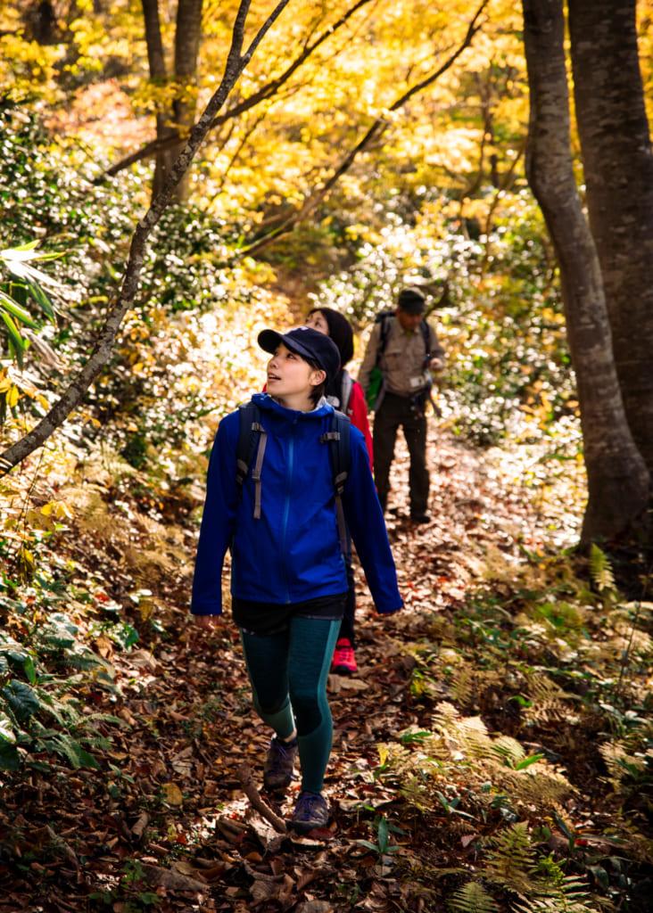 La cara de asombro al pasear bajo las hojas amarillentas del sendero en Iiyama