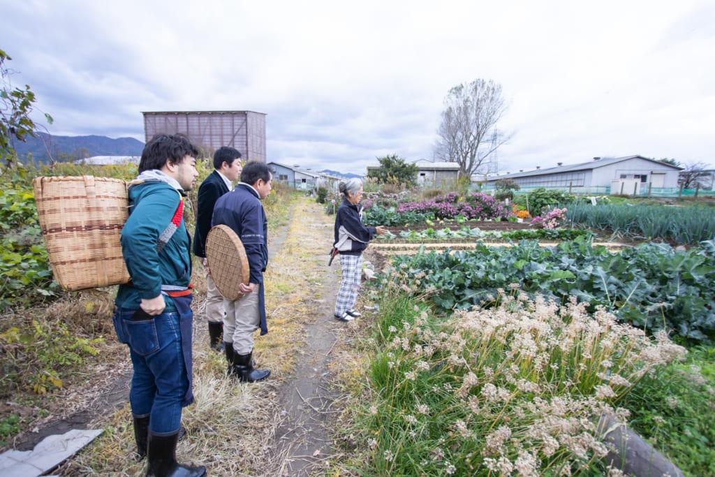 Campos de Murakami, Niigata, Japón