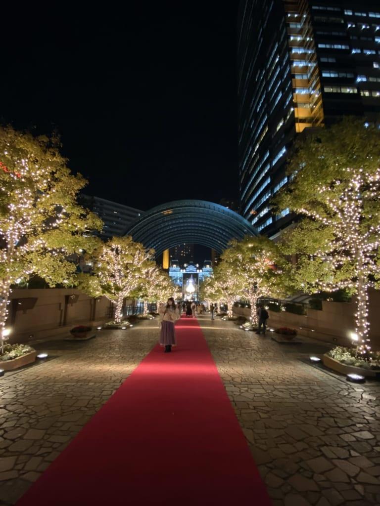 Luces en Ebisu, Tokio, Japón