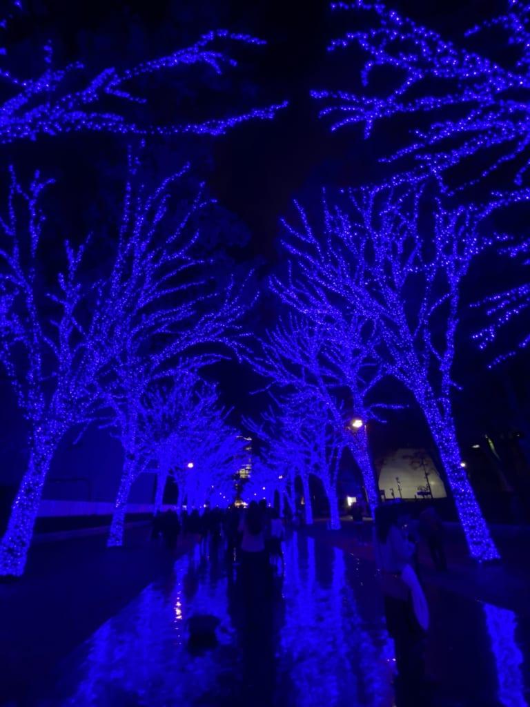 Luces en Shibuya, Tokio, Japón