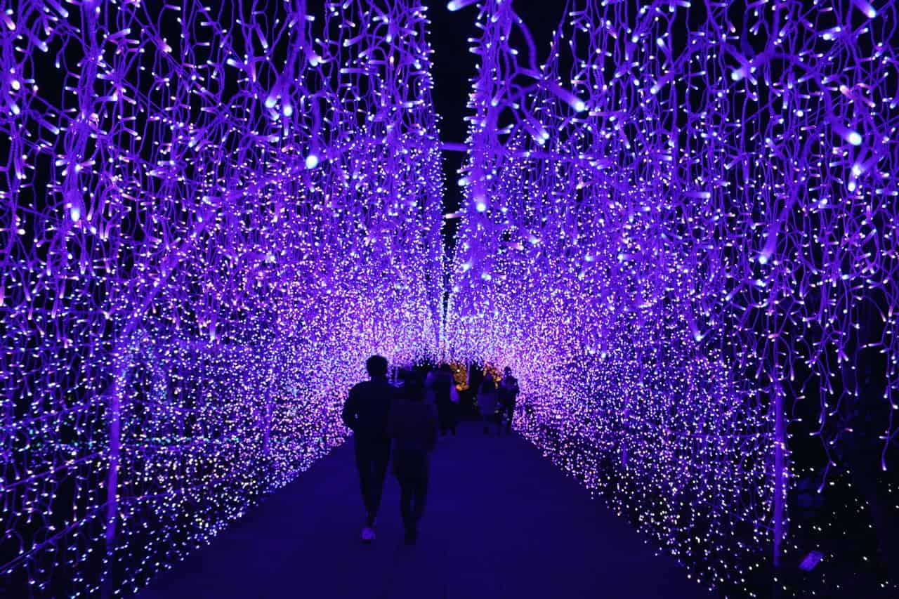 The Jewel of Shonan: el paraíso de las luces de invierno en Enoshima