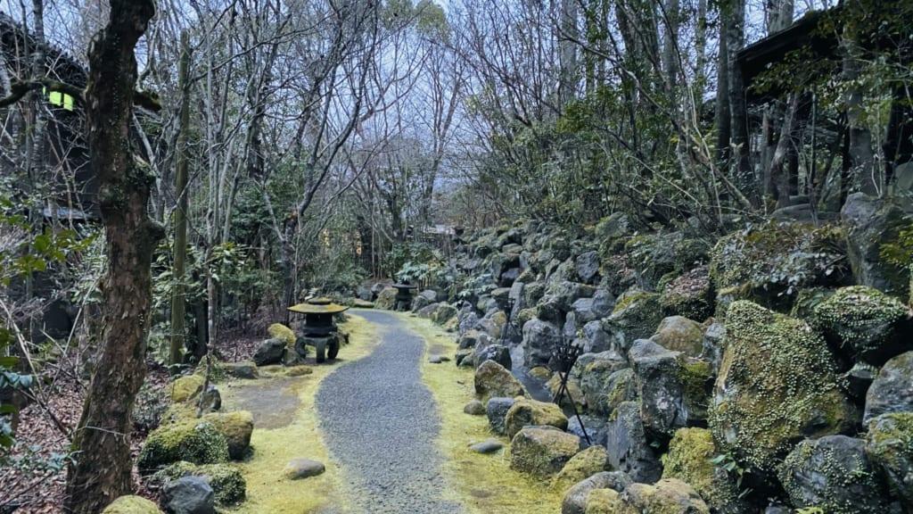bosques que rodean el hotel Tensui