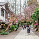Jindaiji, un pequeño Kioto en un Tokio diferente y desconocido