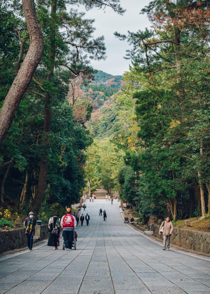 Camino para llegar al santuario Izumo Taisha