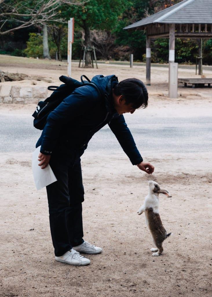 Dándole comida a un conejo en la isla