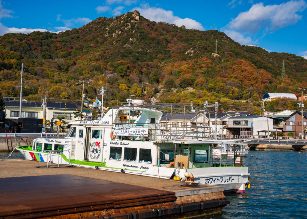 El ferry para viajar hasta la isla de los conejos