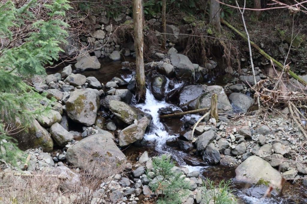 La naturaleza que rodea la cascada