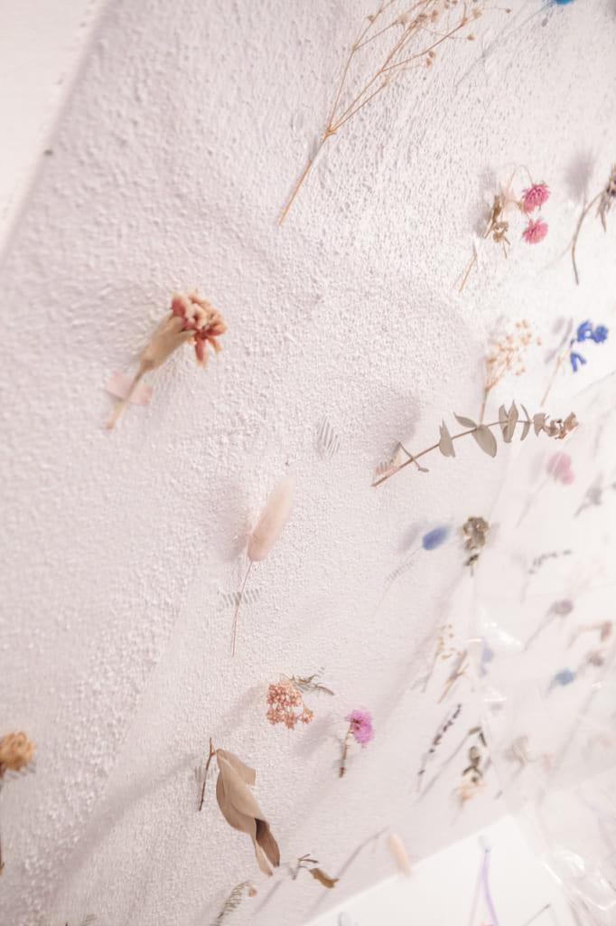 detalle de flores secas en una pared