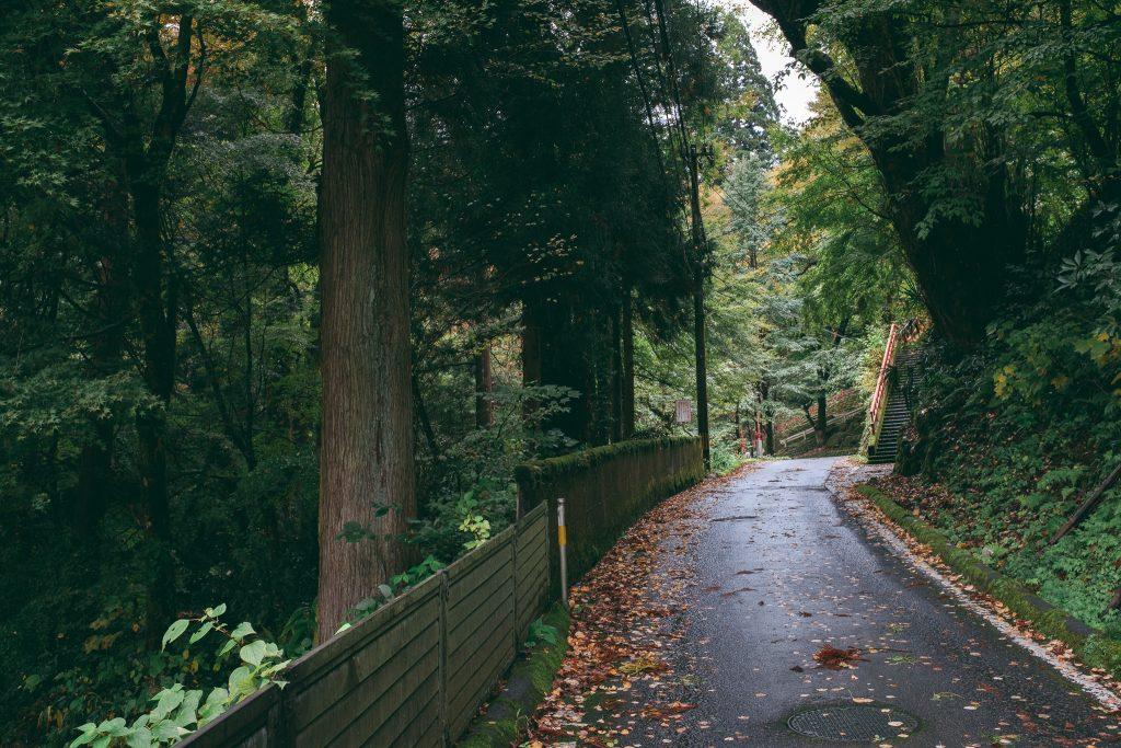 Paseando con bicicleta por carreteras en las montañas de Toyama, Japón