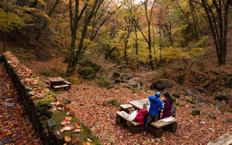 Haciendo picnic en el Monte Mitake