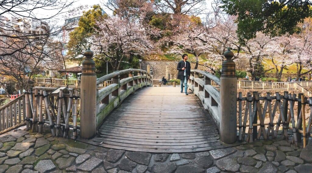 Puente encima del Otonashi Water Park
