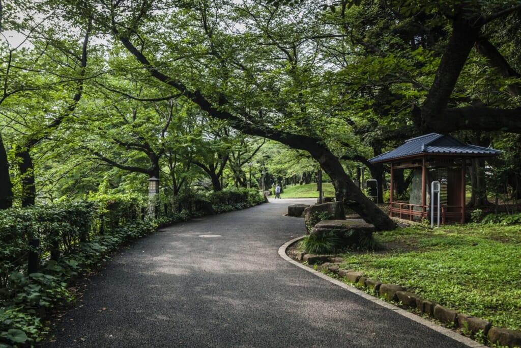 Vista general del parque en Oji