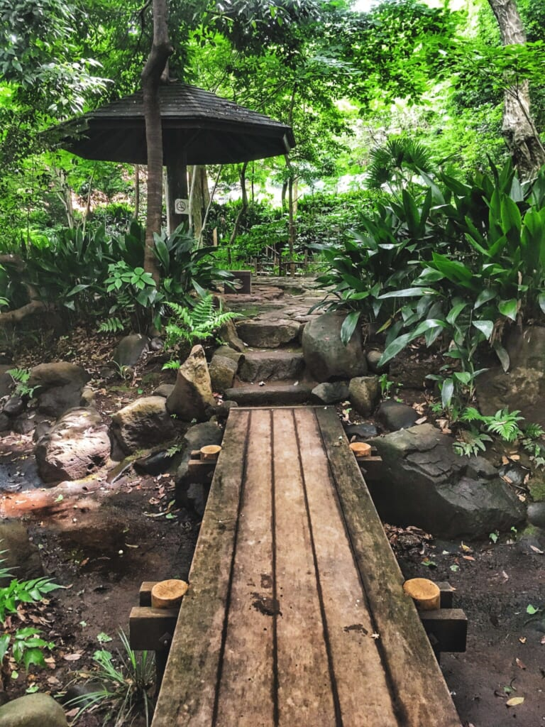 El exhuberante Parque Nanushinotaki