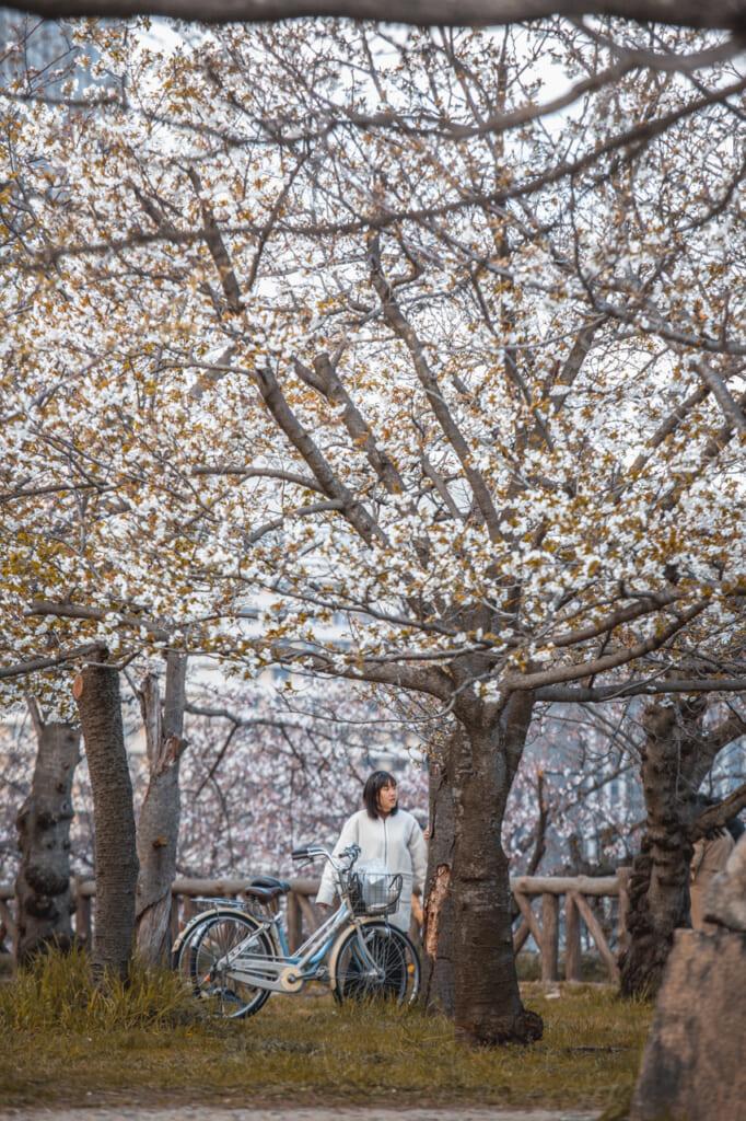 chica con una bici bajo cerezo en flor
