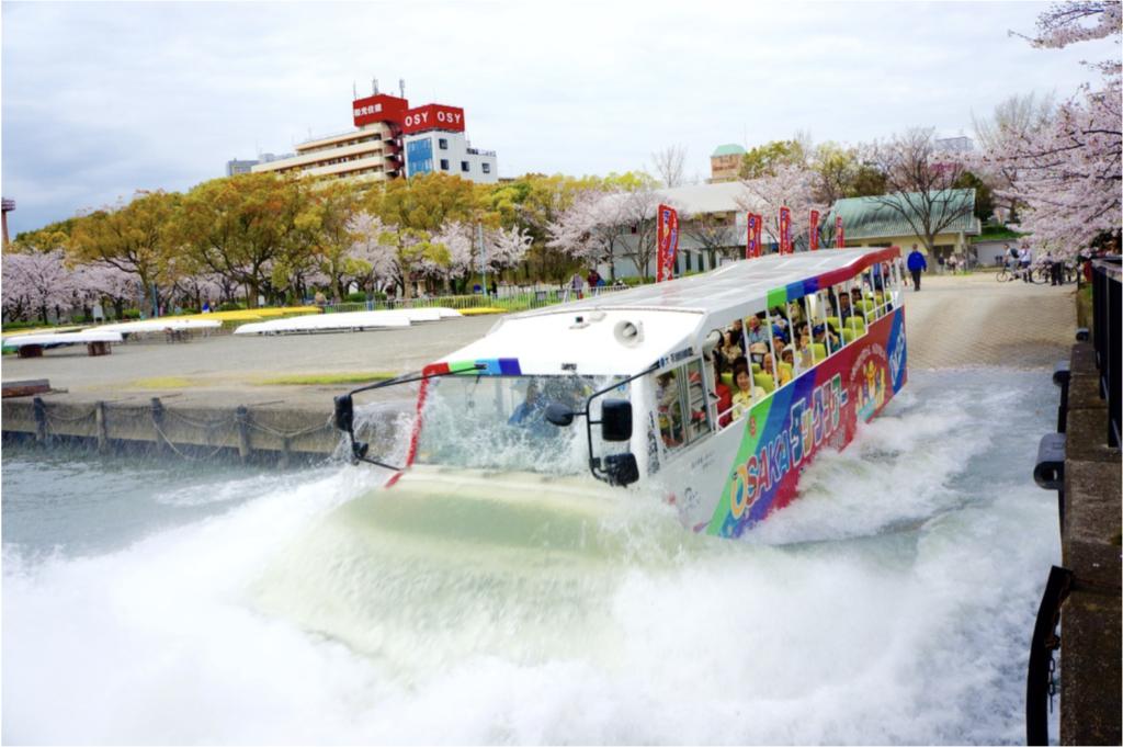 autobus flotante entrando en el rio
